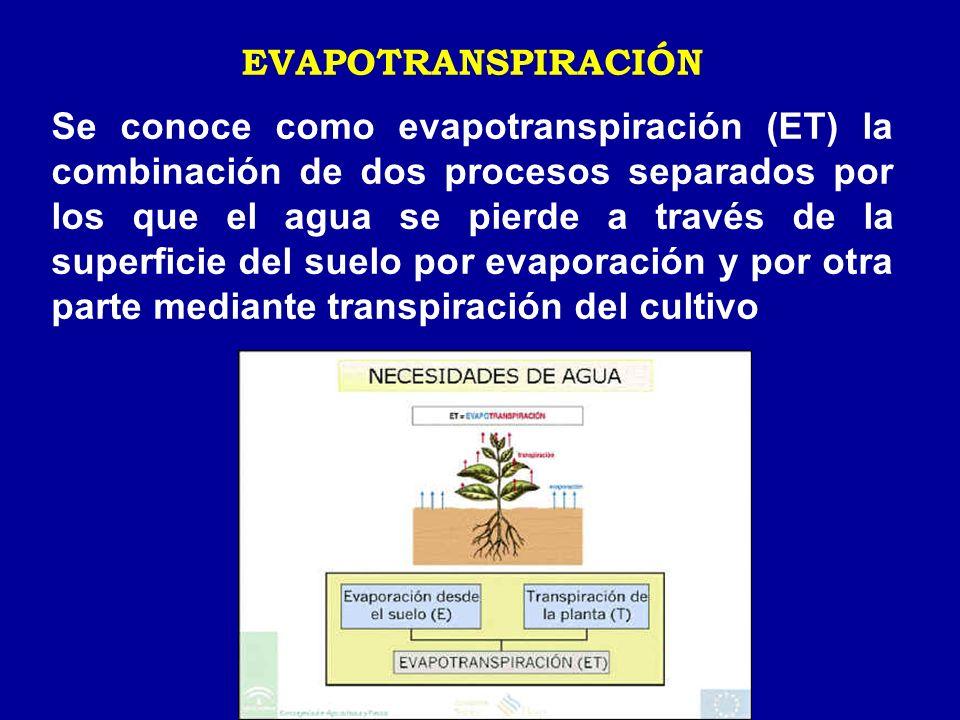 EVAPOTRANSPIRACIÓN Se conoce como evapotranspiración (ET) la combinación de dos procesos separados por los que el agua se pierde a través de la superf