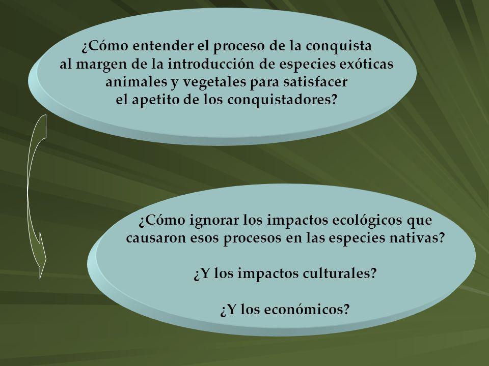 ¿Cómo entender el proceso de la conquista al margen de la introducción de especies exóticas animales y vegetales para satisfacer el apetito de los con