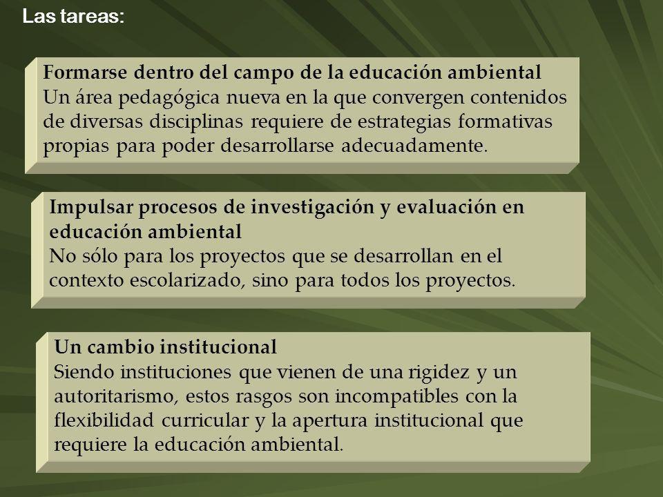 Las tareas: Formarse dentro del campo de la educación ambiental Un área pedagógica nueva en la que convergen contenidos de diversas disciplinas requie