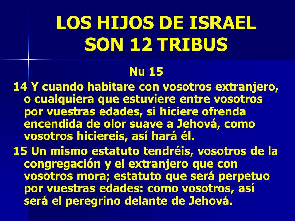 LOS HIJOS DE ISRAEL SON 12 TRIBUS Nu 15 14 Y cuando habitare con vosotros extranjero, o cualquiera que estuviere entre vosotros por vuestras edades, s