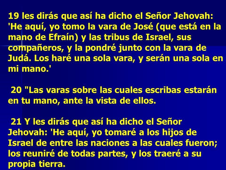 19 les dirás que así ha dicho el Señor Jehovah: 'He aquí, yo tomo la vara de José (que está en la mano de Efraín) y las tribus de Israel, sus compañer