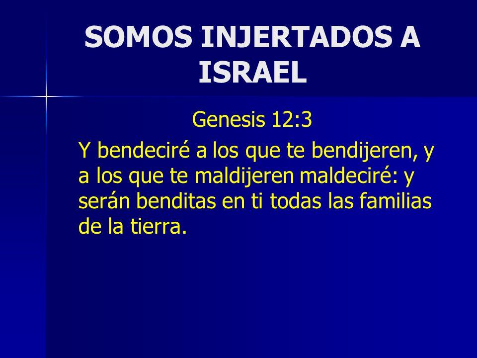 SOMOS INJERTADOS A ISRAEL Genesis 12:3 Y bendeciré a los que te bendijeren, y a los que te maldijeren maldeciré: y serán benditas en ti todas las fami