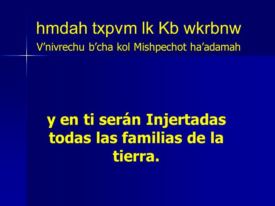 y en ti serán Injertadas todas las familias de la tierra. hmdah txpvm lk Kb wkrbnw Vnivrechu bcha kol Mishpechot haadamah