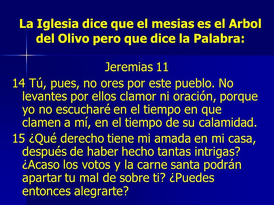 La Iglesia dice que el mesias es el Arbol del Olivo pero que dice la Palabra: Jeremias 11 14 Tú, pues, no ores por este pueblo. No levantes por ellos