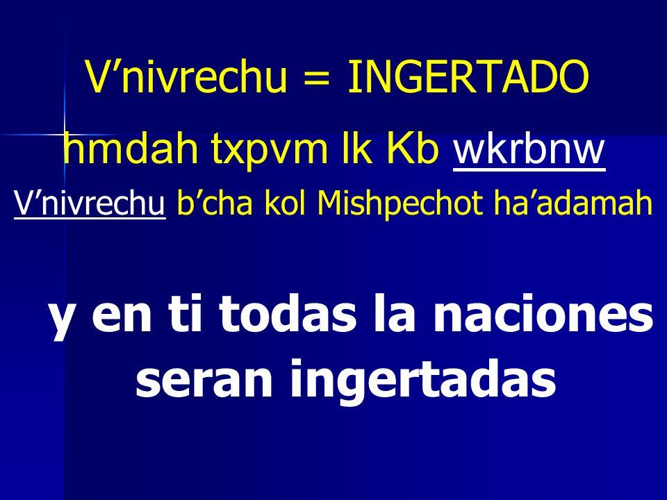 Vnivrechu = INGERTADO hmdah txpvm lk Kb wkrbnw Vnivrechu bcha kol Mishpechot haadamah y en ti todas la naciones seran ingertadas