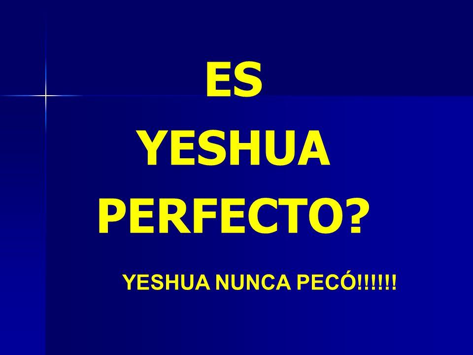 ES YESHUA PERFECTO? YESHUA NUNCA PECÓ!!!!!!