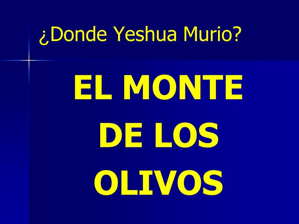 ¿ Donde Yeshua Murio? EL MONTE DE LOS OLIVOS