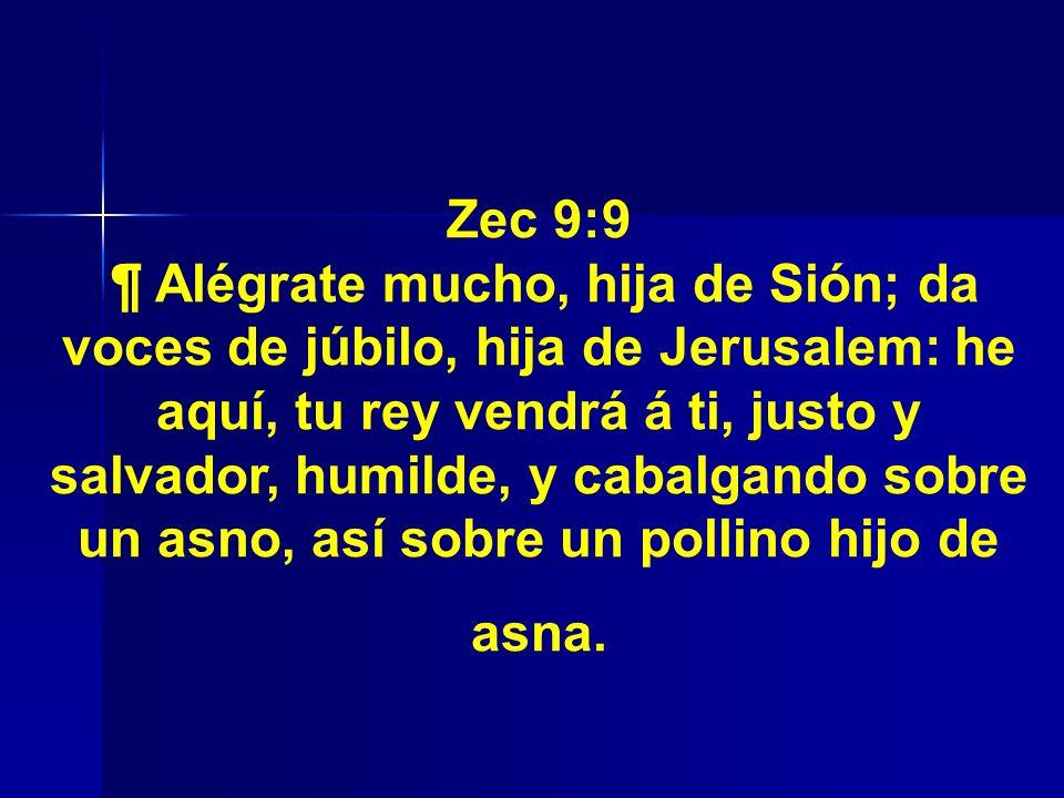 Zec 9:9 ¶ Alégrate mucho, hija de Sión; da voces de júbilo, hija de Jerusalem: he aquí, tu rey vendrá á ti, justo y salvador, humilde, y cabalgando so