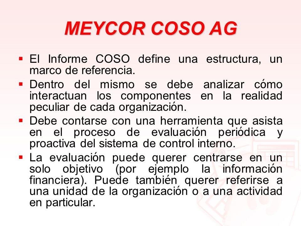 MEYCOR COSO AG El Informe COSO define una estructura, un marco de referencia. Dentro del mismo se debe analizar c ó mo interactuan los componentes en