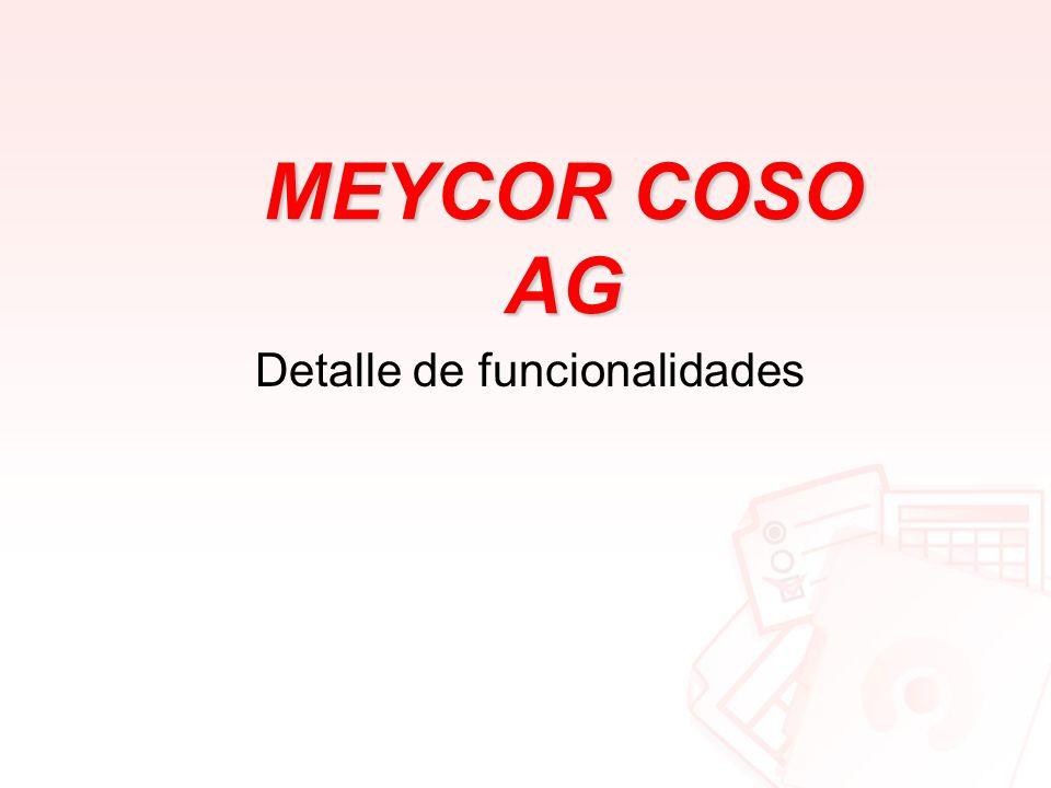 MEYCOR COSO AG Detalle de funcionalidades