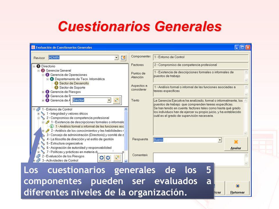 Cuestionarios Generales Los cuestionarios generales de los 5 componentes pueden ser evaluados a diferentes niveles de la organización.