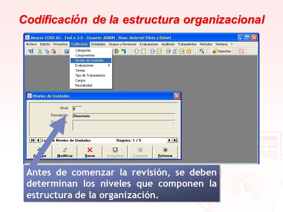 Codificaci ó n de la estructura organizacional Antes de comenzar la revisión, se deben determinan los niveles que componen la estructura de la organiz