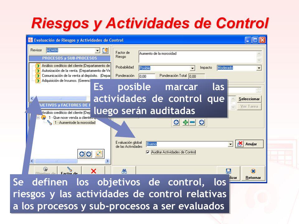 Riesgos y Actividades de Control Se definen los objetivos de control, los riesgos y las actividades de control relativas a los procesos y sub-procesos