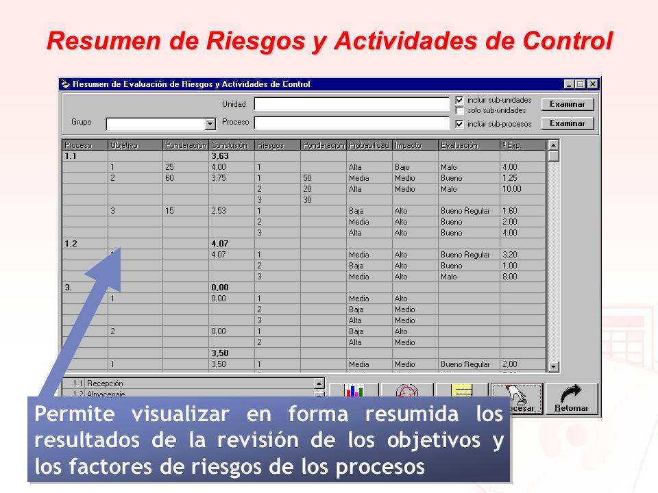 Resumen de Riesgos y Actividades de Control Permite visualizar en forma resumida los resultados de la revisión de los objetivos y los factores de ries