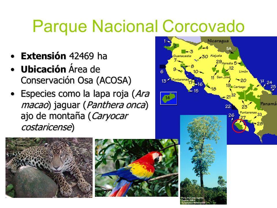 Parque Nacional Corcovado Extensión 42469 haExtensión 42469 ha Ubicación Área de Conservación Osa (ACOSA)Ubicación Área de Conservación Osa (ACOSA) Es