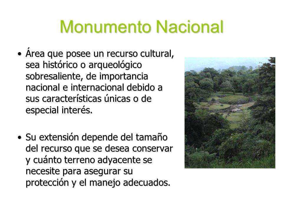 Monumento Nacional Área que posee un recurso cultural, sea histórico o arqueológico sobresaliente, de importancia nacional e internacional debido a su