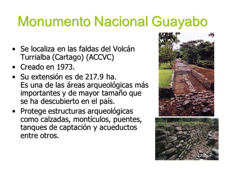 Monumento Nacional Guayabo Se localiza en las faldas del Volcán Turrialba (Cartago) (ACCVC)Se localiza en las faldas del Volcán Turrialba (Cartago) (A