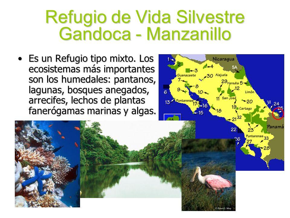 Refugio de Vida Silvestre Gandoca - Manzanillo Es un Refugio tipo mixto. Los ecosistemas más importantes son los humedales: pantanos, lagunas, bosques
