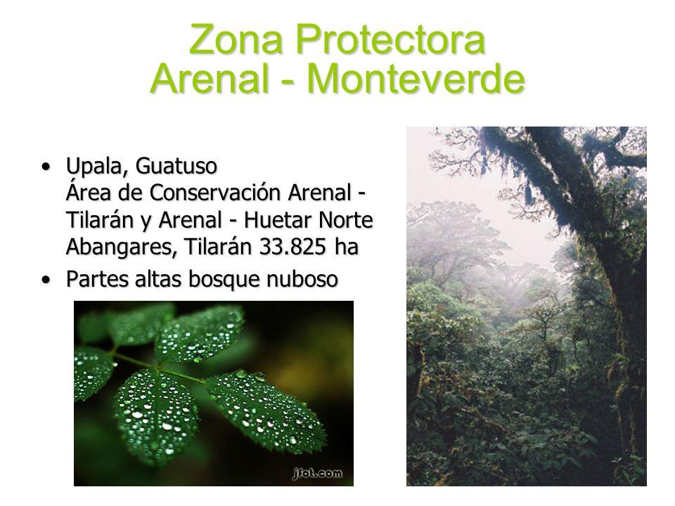 Zona Protectora Arenal - Monteverde Upala, Guatuso Área de Conservación Arenal - Tilarán y Arenal - Huetar Norte Abangares, Tilarán 33.825 haUpala, Gu