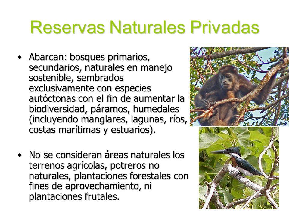Reservas Naturales Privadas Abarcan: bosques primarios, secundarios, naturales en manejo sostenible, sembrados exclusivamente con especies autóctonas