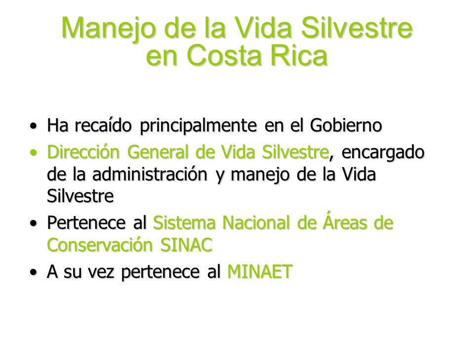 Manejo de la Vida Silvestre en Costa Rica Ha recaído principalmente en el GobiernoHa recaído principalmente en el Gobierno Dirección General de Vida S