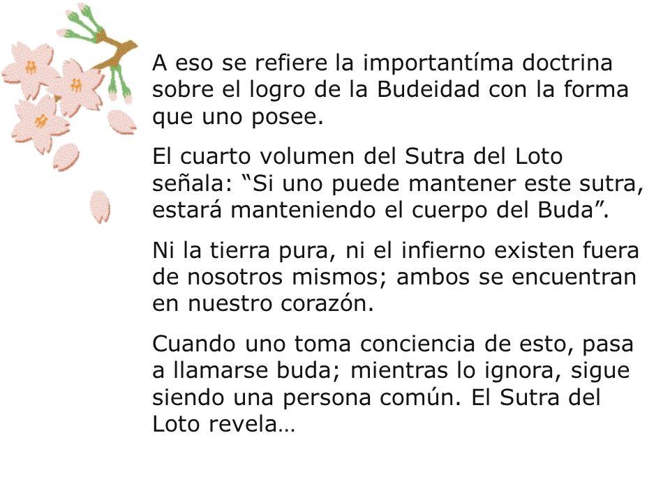 A eso se refiere la importantíma doctrina sobre el logro de la Budeidad con la forma que uno posee. El cuarto volumen del Sutra del Loto señala: Si un
