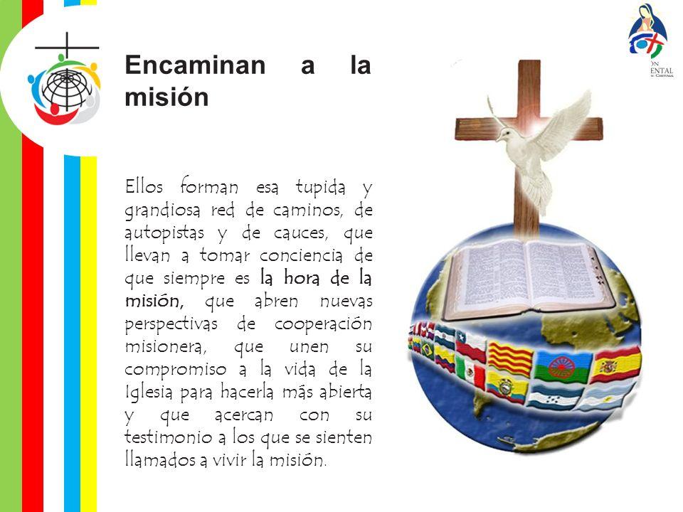¿Cómo definir la figura del animador misionero.