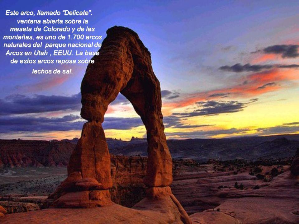 El desierto de Namib, que dio su nombre al Estado de Namibia, se extiende sobre 2.100 km a lo largo de la costa de Africa austral. Es el más viejo de
