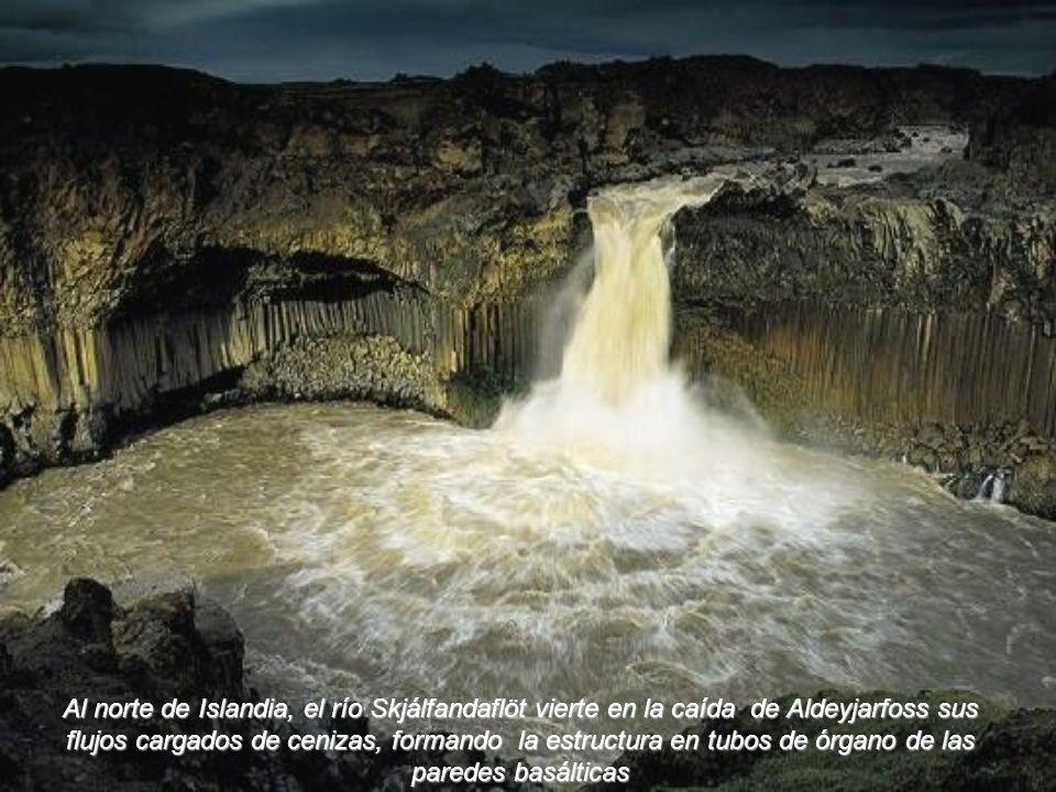En los remolinos y las fumarolas de las fuentes de agua caliente que siembran el caldera de Uzon, en Kamchatka, habrían nacido las primeras moléculas