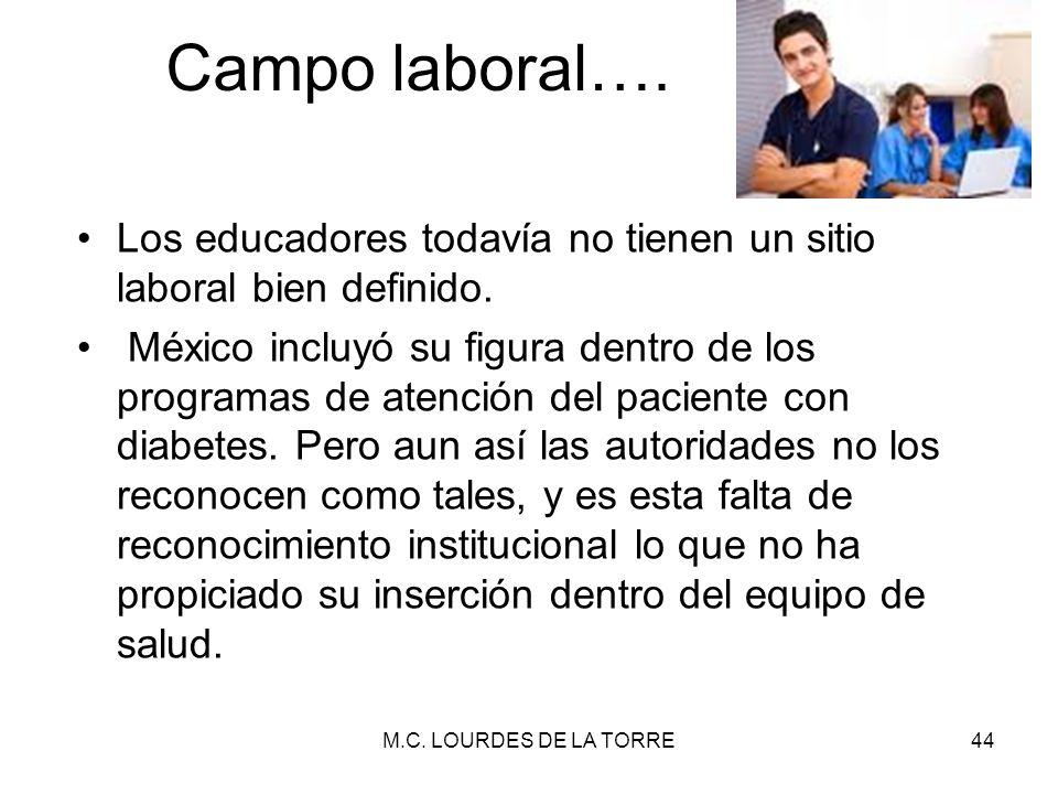 Campo laboral…. Los educadores todavía no tienen un sitio laboral bien definido. México incluyó su figura dentro de los programas de atención del paci