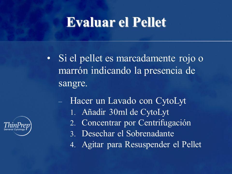Evaluar el Pellet Si el pellet es marcadamente rojo o marrón indicando la presencia de sangre.