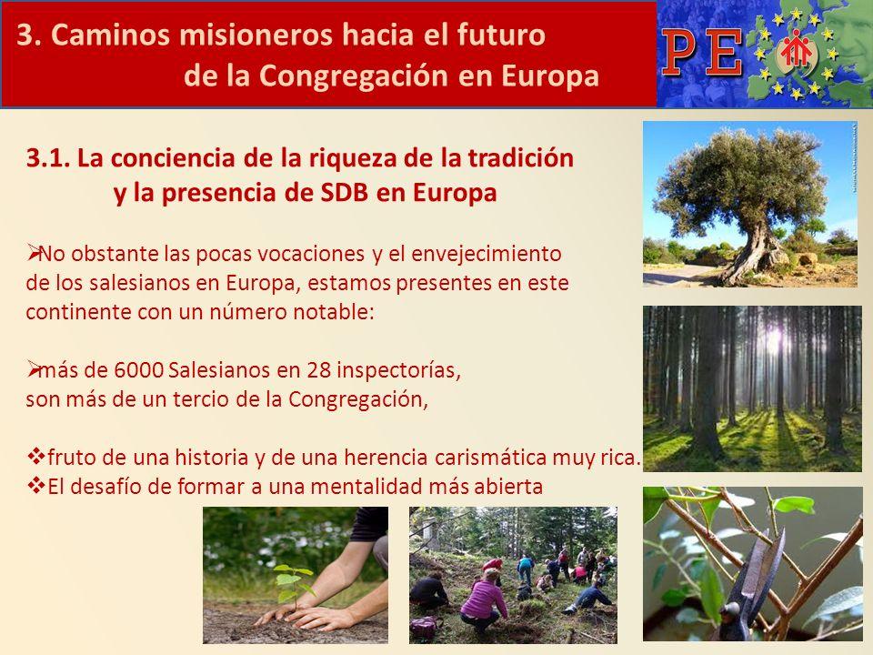 3. Caminos misioneros hacia el futuro de la Congregación en Europa 3.1. La conciencia de la riqueza de la tradición y la presencia de SDB en Europa No