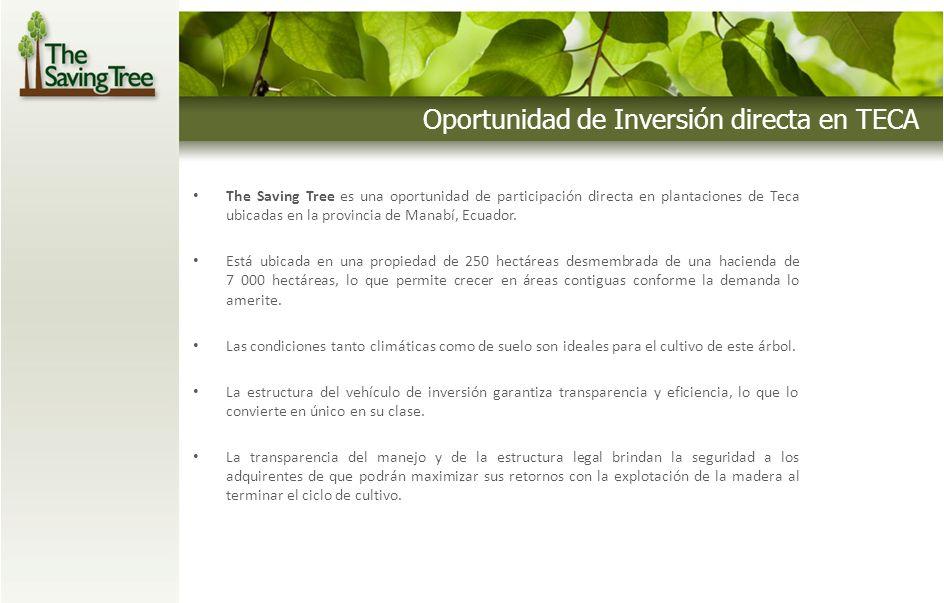 Oportunidad de Inversión directa en TECA The Saving Tree es una oportunidad de participación directa en plantaciones de Teca ubicadas en la provincia