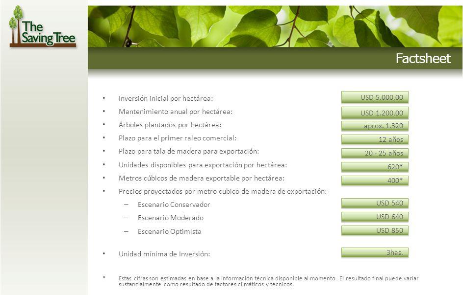 Inversión inicial por hectárea: Mantenimiento anual por hectárea: Árboles plantados por hectárea: Plazo para el primer raleo comercial: Plazo para tal
