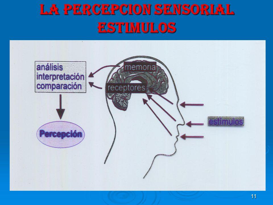 11 LA PERCEPCION SENSORIAL ESTIMULOS