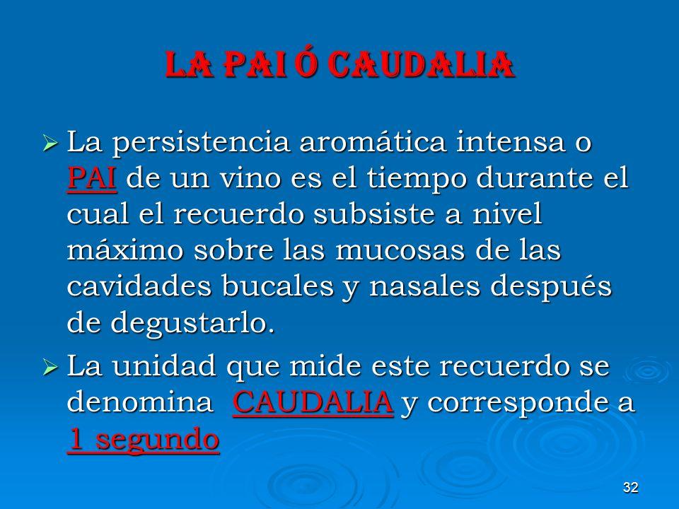 32 LA PAI ó CAUDALIA La persistencia aromática intensa o PAI de un vino es el tiempo durante el cual el recuerdo subsiste a nivel máximo sobre las muc