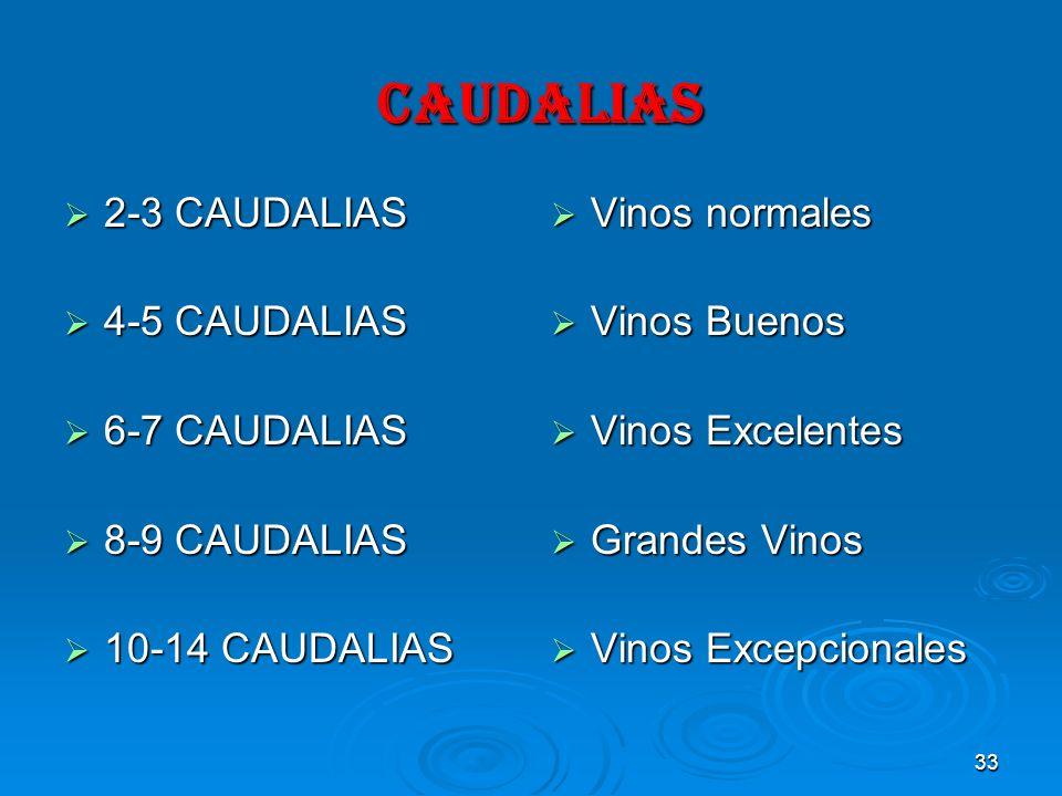 33 CAUDALIAS CAUDALIAS 2-3 CAUDALIAS 2-3 CAUDALIAS 4-5 CAUDALIAS 4-5 CAUDALIAS 6-7 CAUDALIAS 6-7 CAUDALIAS 8-9 CAUDALIAS 8-9 CAUDALIAS 10-14 CAUDALIAS