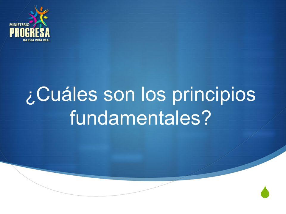 ¿ Cuáles son los principios fundamentales?