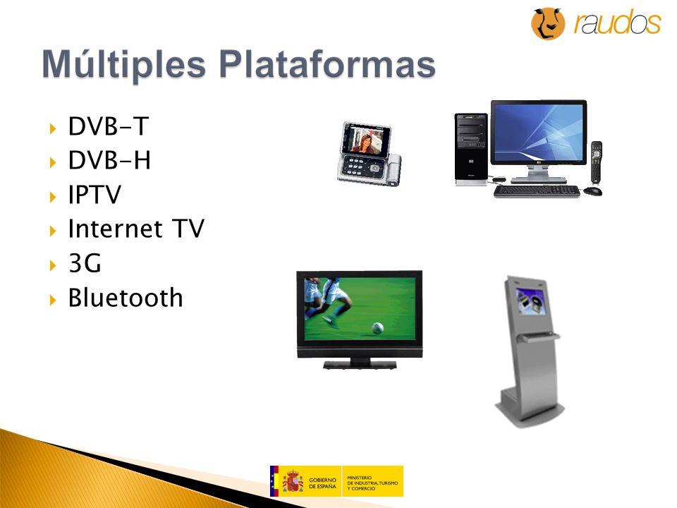DVB-T DVB-H IPTV Internet TV 3G Bluetooth