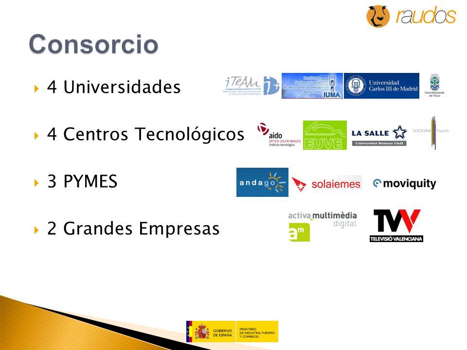 4 Universidades 4 Centros Tecnológicos 3 PYMES 2 Grandes Empresas