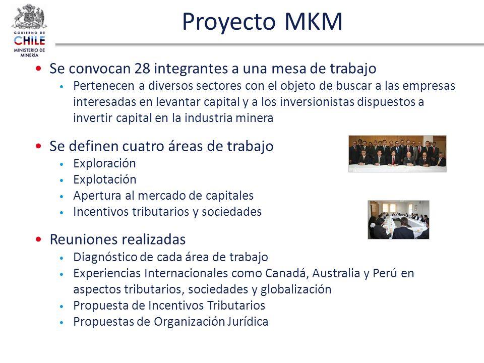 Proyecto MKM Se convocan 28 integrantes a una mesa de trabajo Pertenecen a diversos sectores con el objeto de buscar a las empresas interesadas en lev
