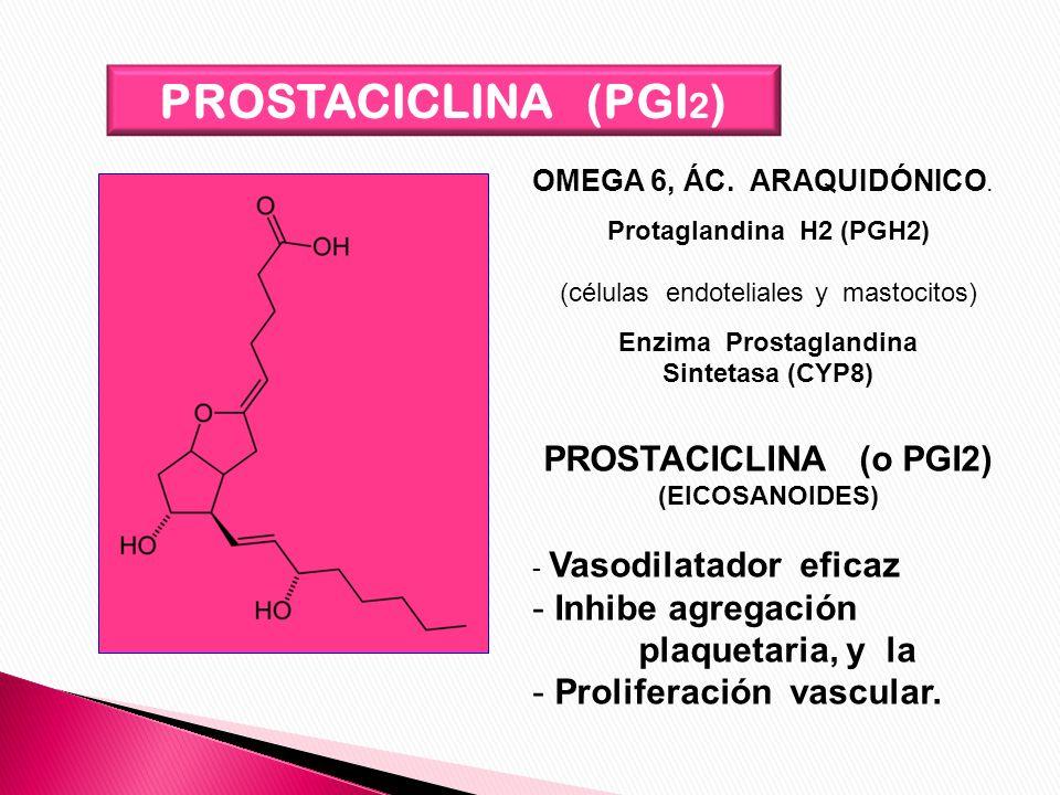 PROSTACICLINA (PGI 2 ) OMEGA 6, ÁC. ARAQUIDÓNICO. Protaglandina H2 (PGH2) (células endoteliales y mastocitos) Enzima Prostaglandina Sintetasa (CYP8) P