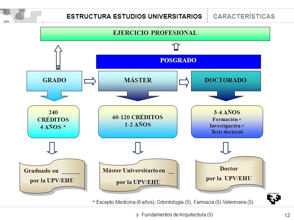 12 EJERCICIO PROFESIONAL POSGRADO GRADOMÁSTERDOCTORADO 240 CRÉDITOS 4 AÑOS * 60-120 CRÉDITOS 1-2 AÑOS 3-4 AÑOS Formación + Investigación + Tesis docto