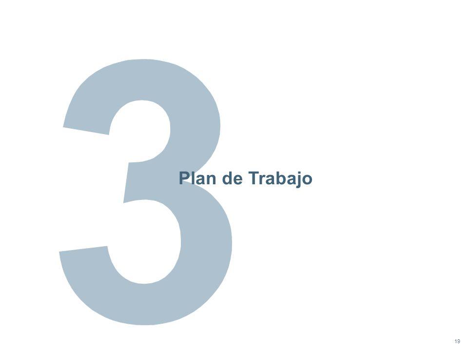 19 Plan de Trabajo