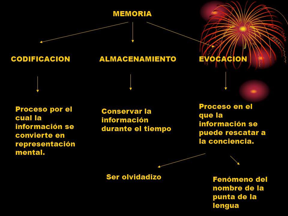 MEMORIA CODIFICACION Proceso por el cual la información se convierte en representación mental. ALMACENAMIENTO Conservar la información durante el tiem