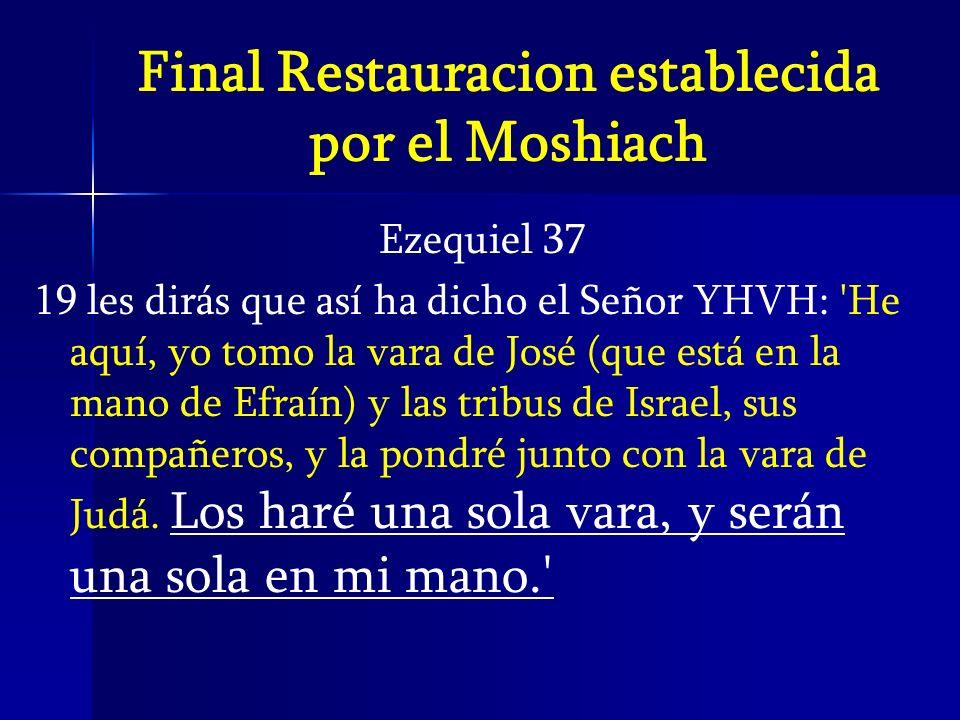 Final Restauracion establecida por el Moshiach Ezequiel 37 19 les dirás que así ha dicho el Señor YHVH: 'He aquí, yo tomo la vara de José (que está en