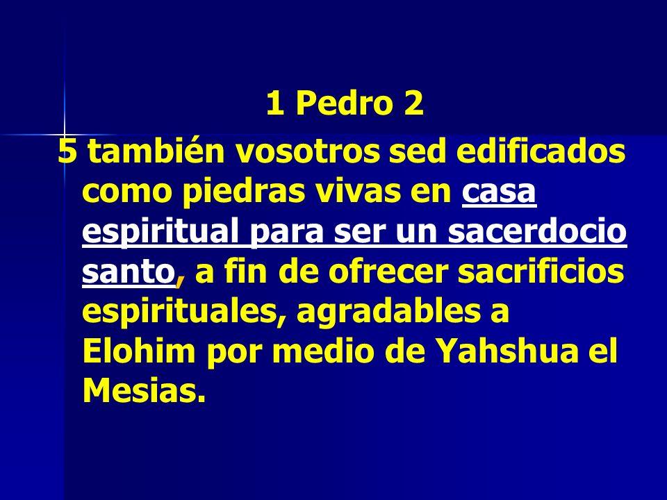 1 Pedro 2 5 también vosotros sed edificados como piedras vivas en casa espiritual para ser un sacerdocio santo, a fin de ofrecer sacrificios espiritua