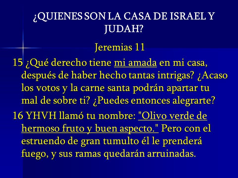 ¿QUIENES SON LA CASA DE ISRAEL Y JUDAH? Jeremias 11 15 ¿Qué derecho tiene en mi casa, después de haber hecho tantas intrigas? ¿Acaso los votos y la ca