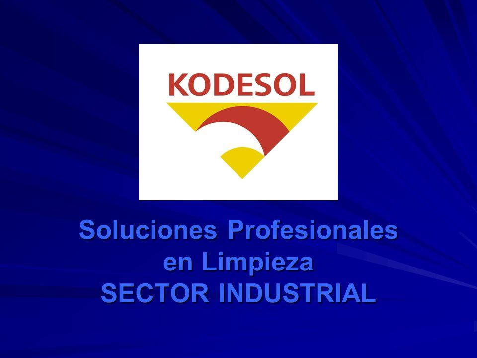 ECOLIMP (Desengrasante desoxidante de suelos) KODESOL - 80(Aditivo de agua en torres de refrigeración) KODESOL - 84(Tratamiento de agua de calderas) KODESOL – QUIM (Desincrustante de cal y óxido circuitos interiores) LINDEAL.(Algicida sistemas de agua).