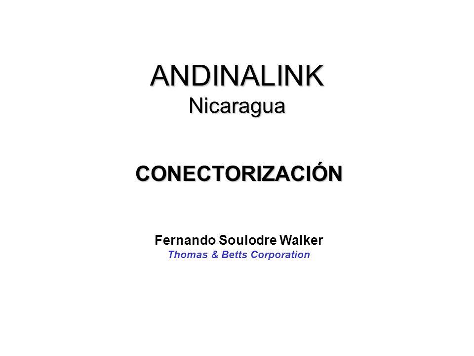 ANDINALINK Nicaragua CONECTORIZACIÓN Fernando Soulodre Walker Thomas & Betts Corporation